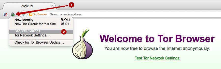 Tor browser как пользоваться hydra2web включить javascript в tor browser hudra